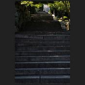 tatsuro_onomichi_012.jpg